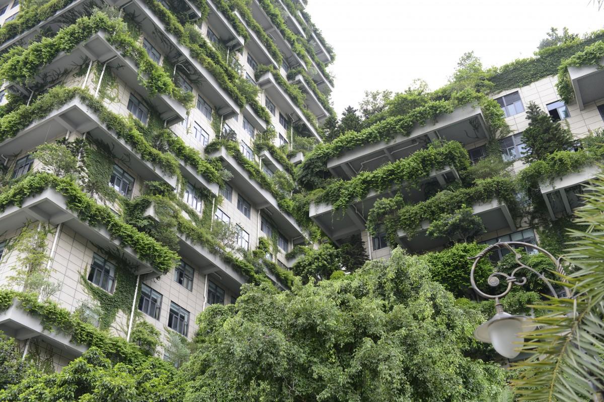 La ville du futur doit-elle s'inspirer de la nature ?