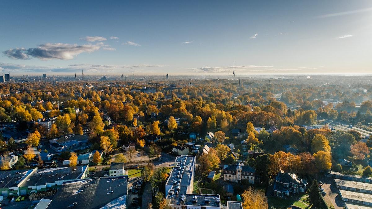 Des solutions pour une ville écosystème